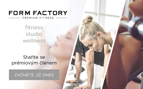 Form Factory AN 480